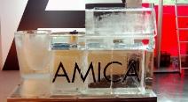 AMICA_1