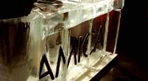 AMICA_9