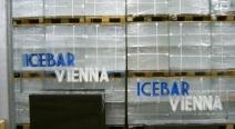 Eisbar Vienna