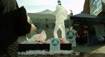 Robbenjagdprotest des IFAW_14