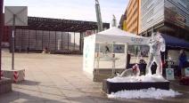 Robbenjagdprotest des IFAW_3