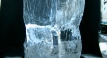 Rentier Eisskulptur_9